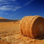 Hay bale high resolution wallpaper