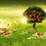 Strawberry tree wallpaper HD