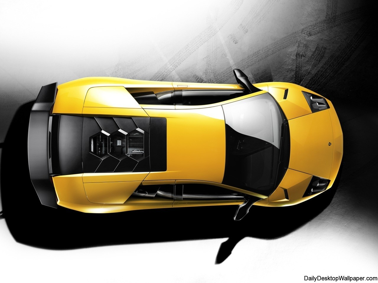 Lamborghini murcielago lp  superveloce top wallpaper
