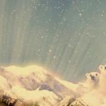 Strange polar bear wallpaper