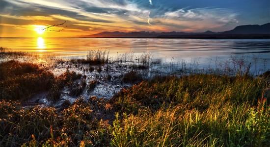 Vibrant lake landscape wallpaper