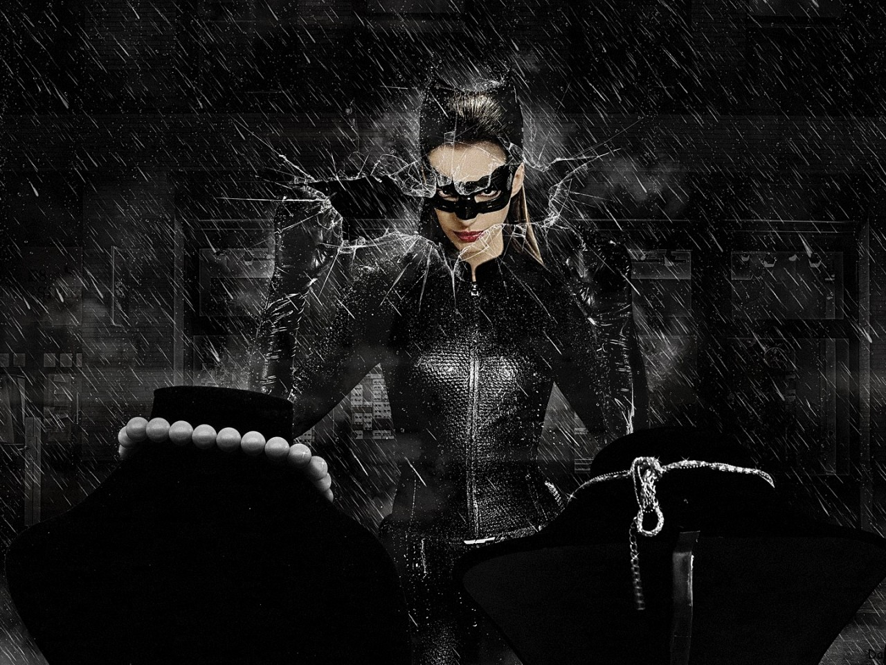 Download 39;selina kyle/ catwoman39; HD wallpaper
