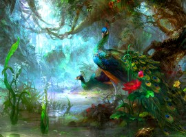 The Peacocks Paradise