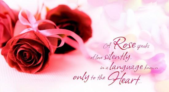 HD Valentines Quote