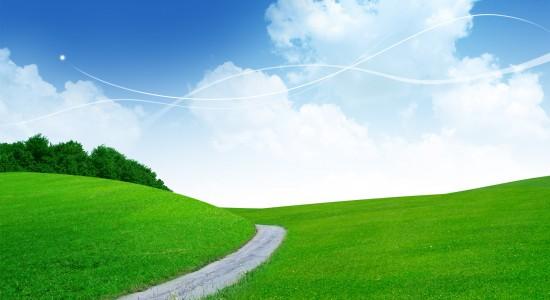 A Path To Peacefulness