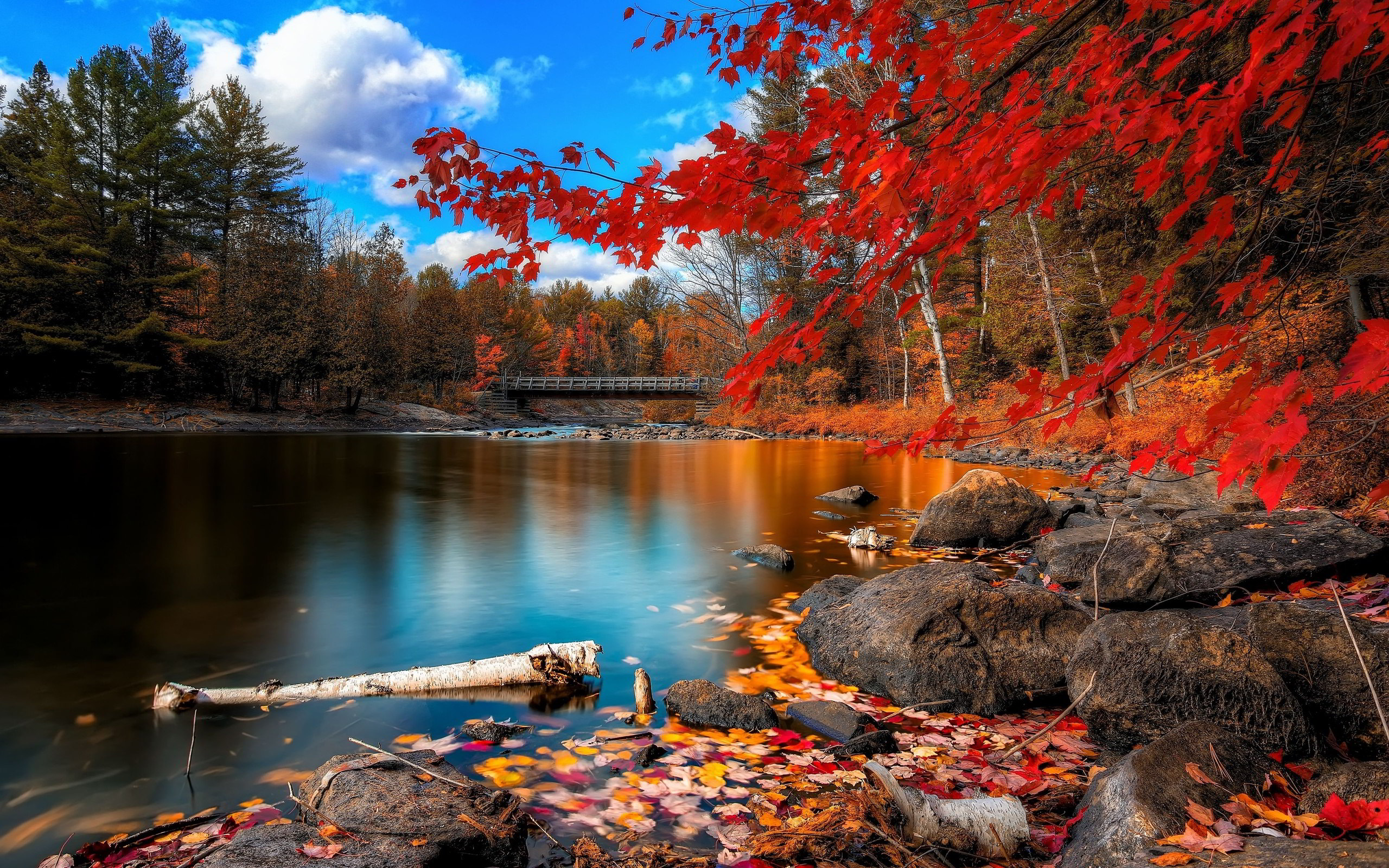 Tranquil River Bed