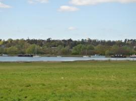A Boat Filled Lake