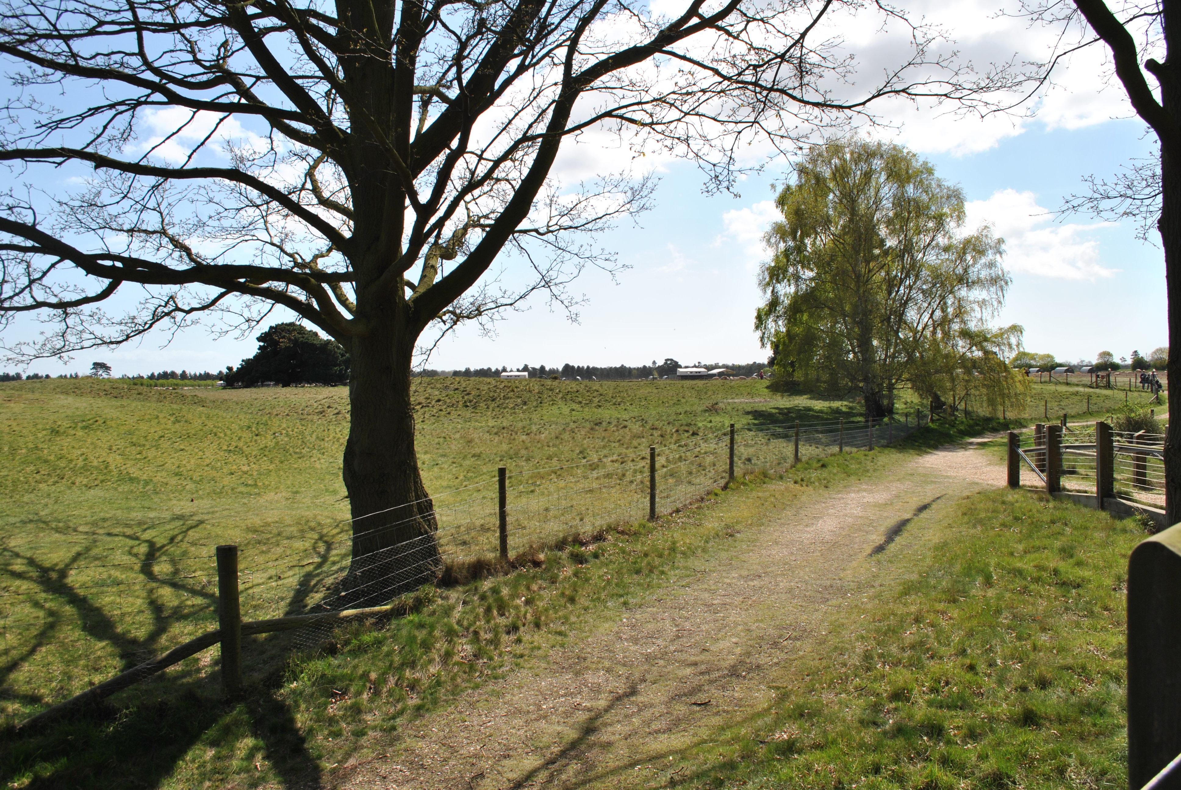 A Path through the Fields
