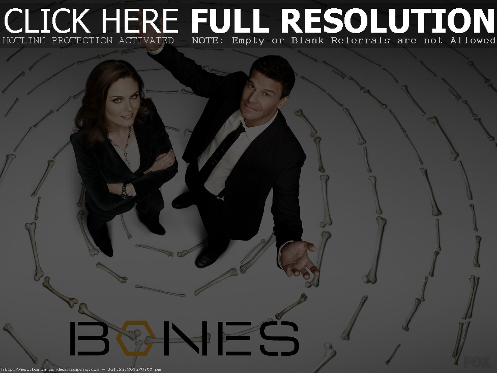 Booth and Brennan Bones Background