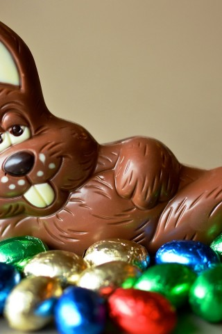 Chocolate Easter Bunny Hd Wallpapers
