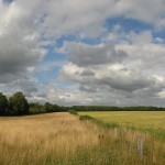 A Cloud Filled Field