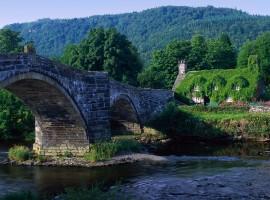 Rural bridge wallpaper