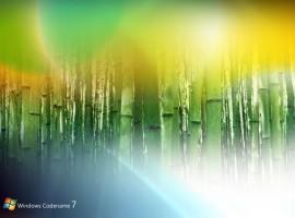 Windows 7 bamboo wallpaper