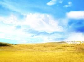 Windows 7 rolling fields