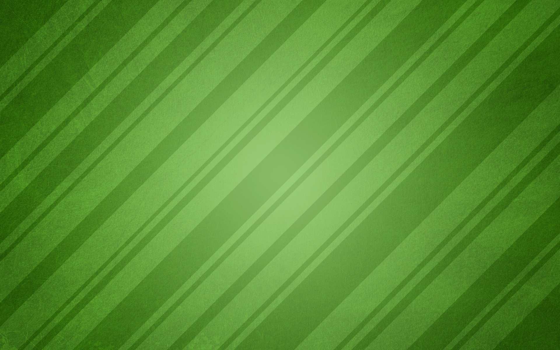 wrapping paper green -#main