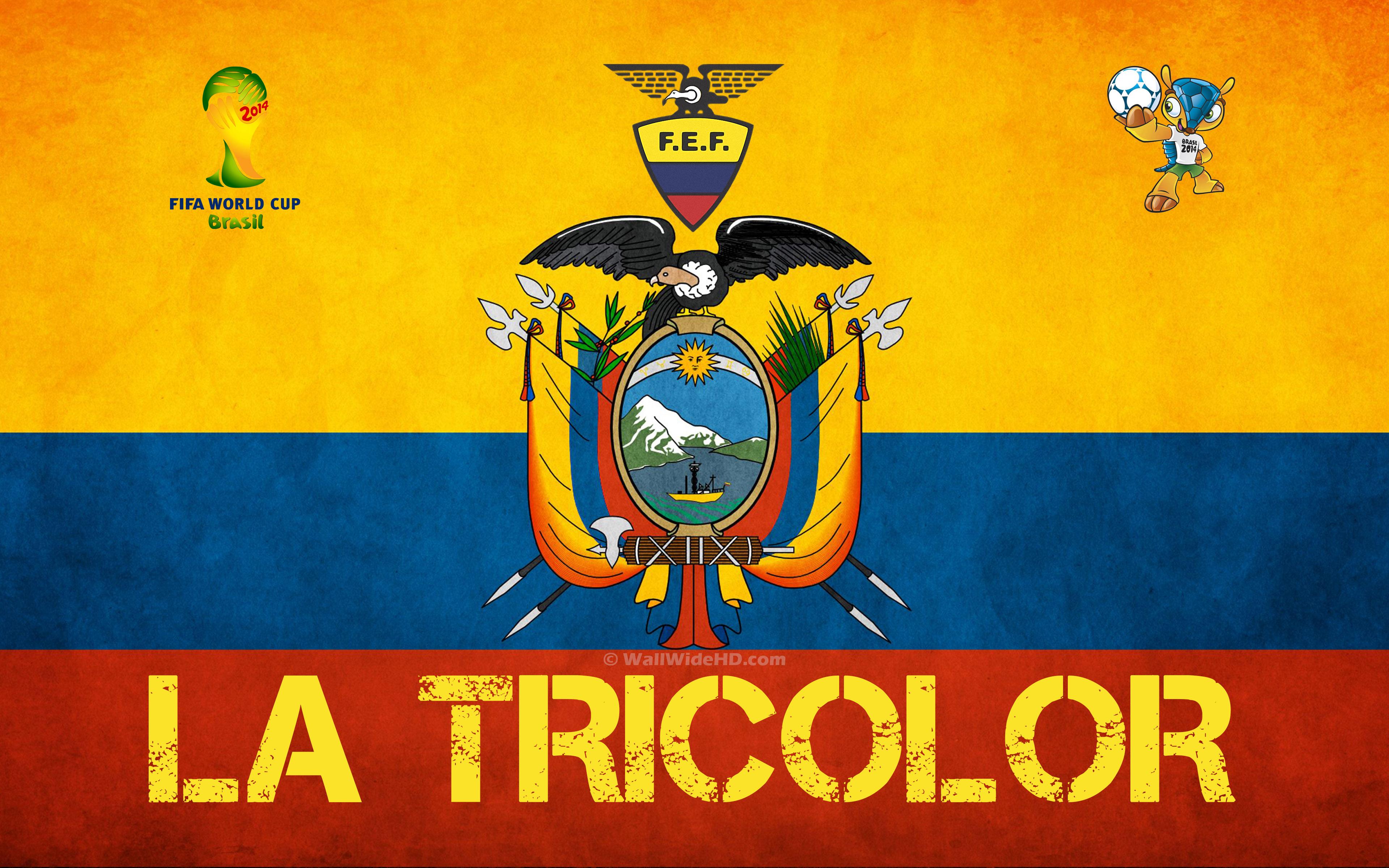 Group E Ecuador – 2014 World Cup