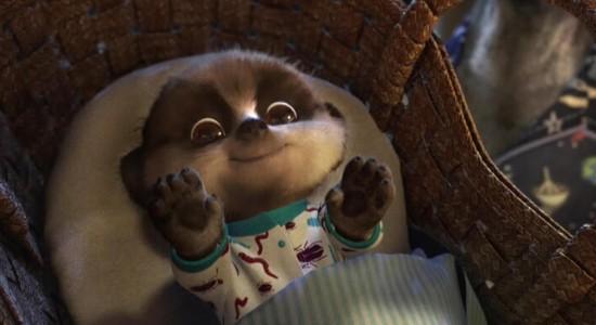 Meerkat Baby Oleg