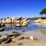 Beautiful Rock Covered Beach