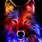 Light Effect Wolf