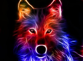 Light Effect Wolf