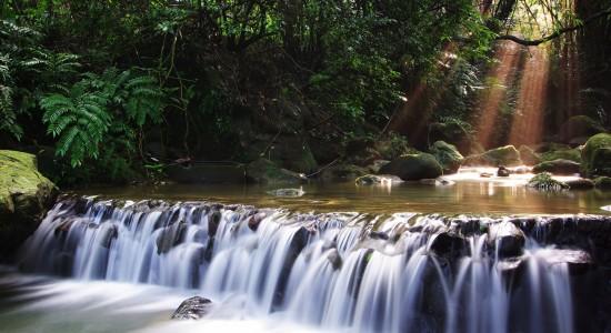 Lush Waterfall Wallpaper