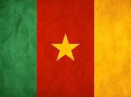Cameroon flag wallpaper