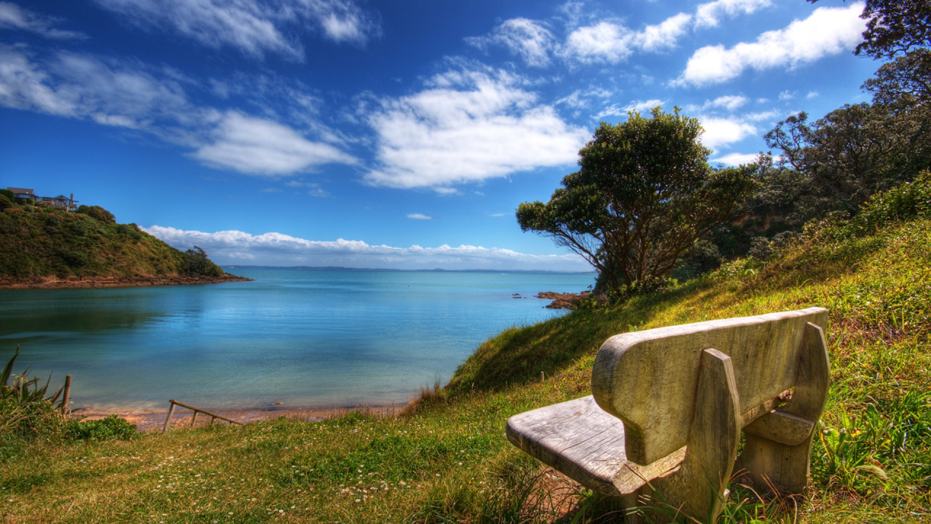 Overlooking bench wallpaper