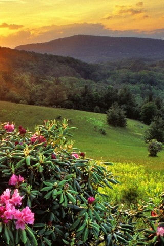 Beautiful Mountain Top Sunset Wallpaper IPhone