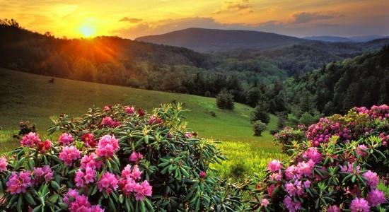 Beautiful Mountain Top Sunset Wallpaper