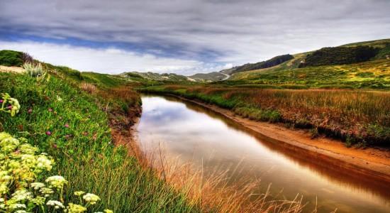 Beautiful Stream Background