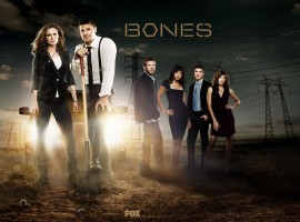 Bones HD Wallpaper