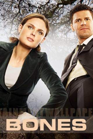 Emily And David Bones Wallpaper IPhone