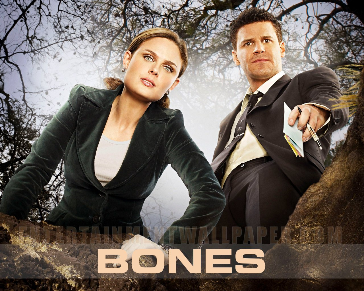 Emily and David Bones Wallpaper