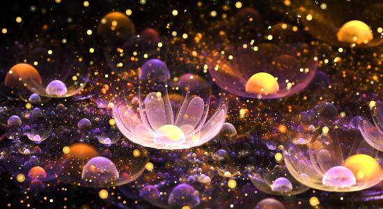 Bubbles-of-Delight