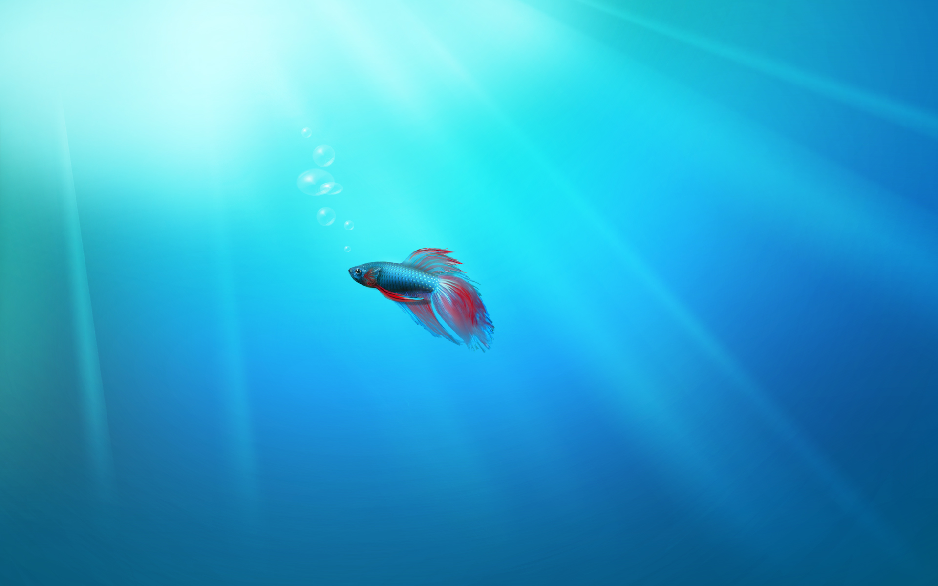 Lonely fish Windows 7 wallpaper