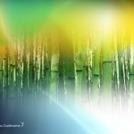 Windows 7 bamboo wallpaper