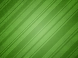 Wrapping Paper Green
