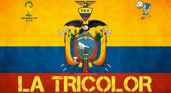 Group E Ecuador - 2014 World Cup