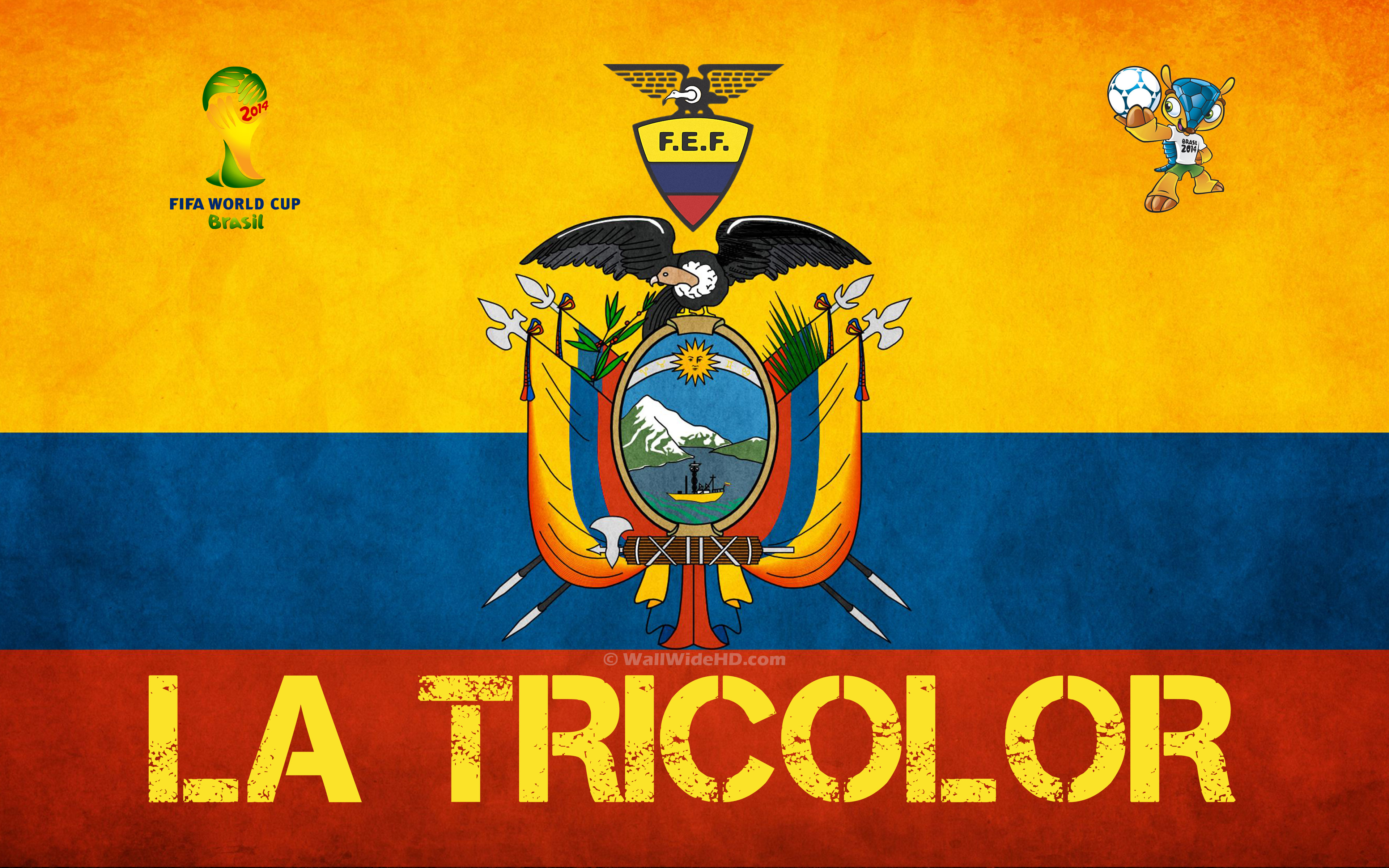 Group E Ecuador – 2014 World Cup