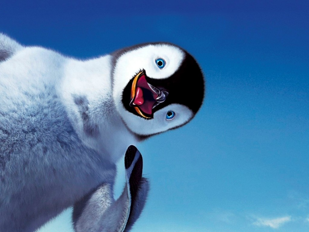 adorable cartoon penguin hd wallpapers