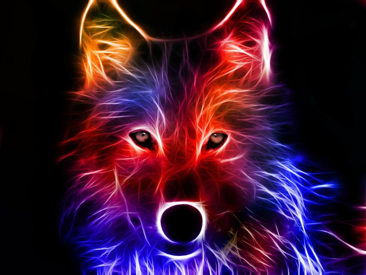 Light Effect Hd Wallpaper Background Images: Light Effect Wolf