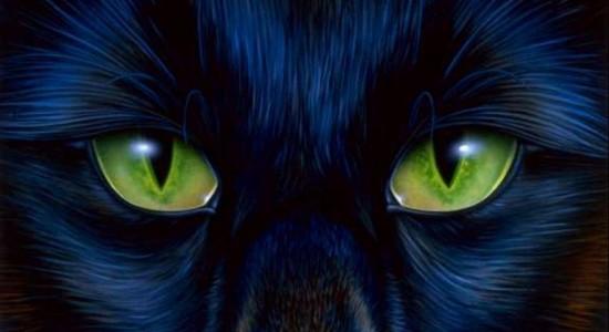 Green Cats Eyes