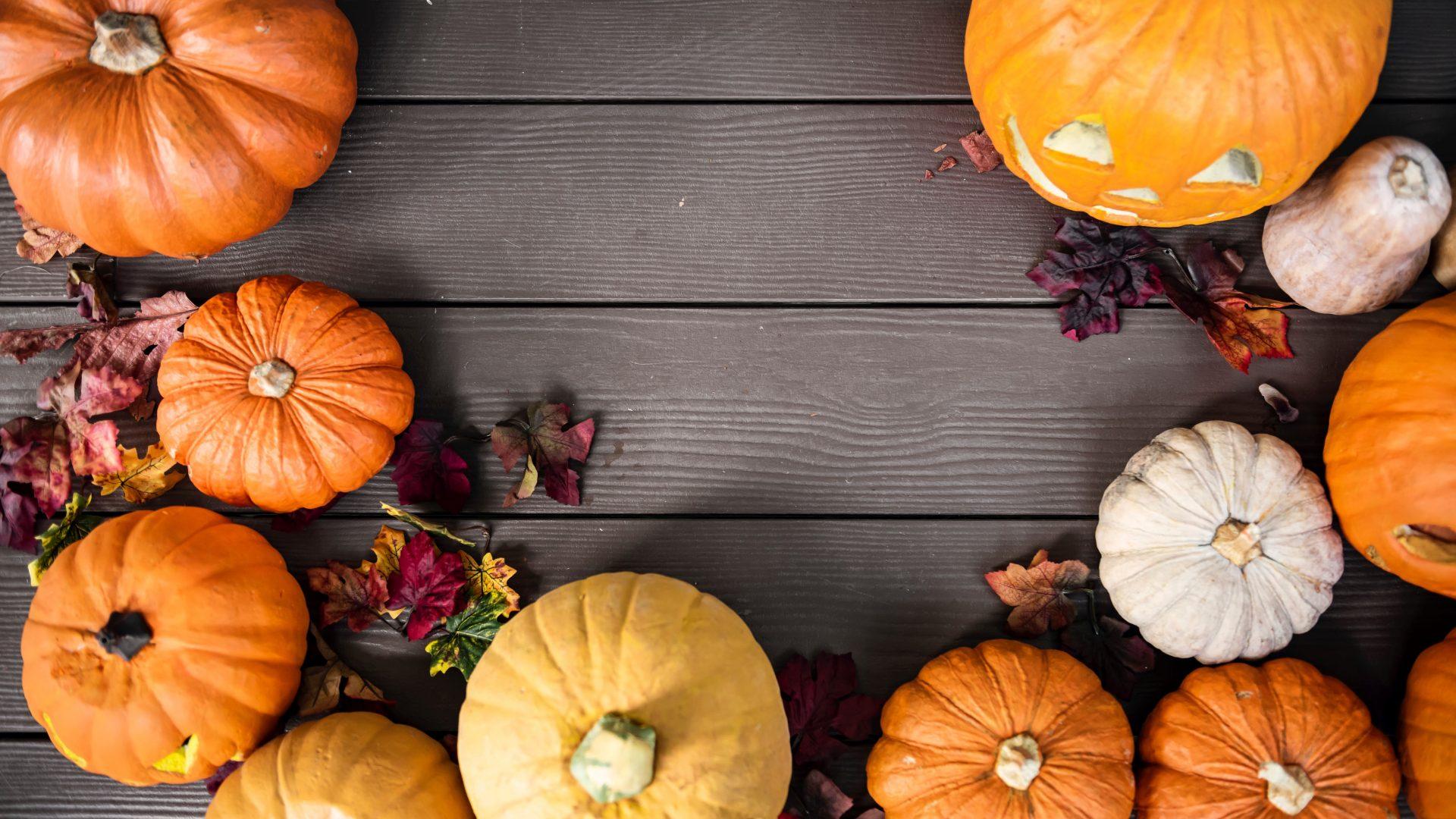 Cute Pumpkin Desktop Wallpaper Hd Wallpapers