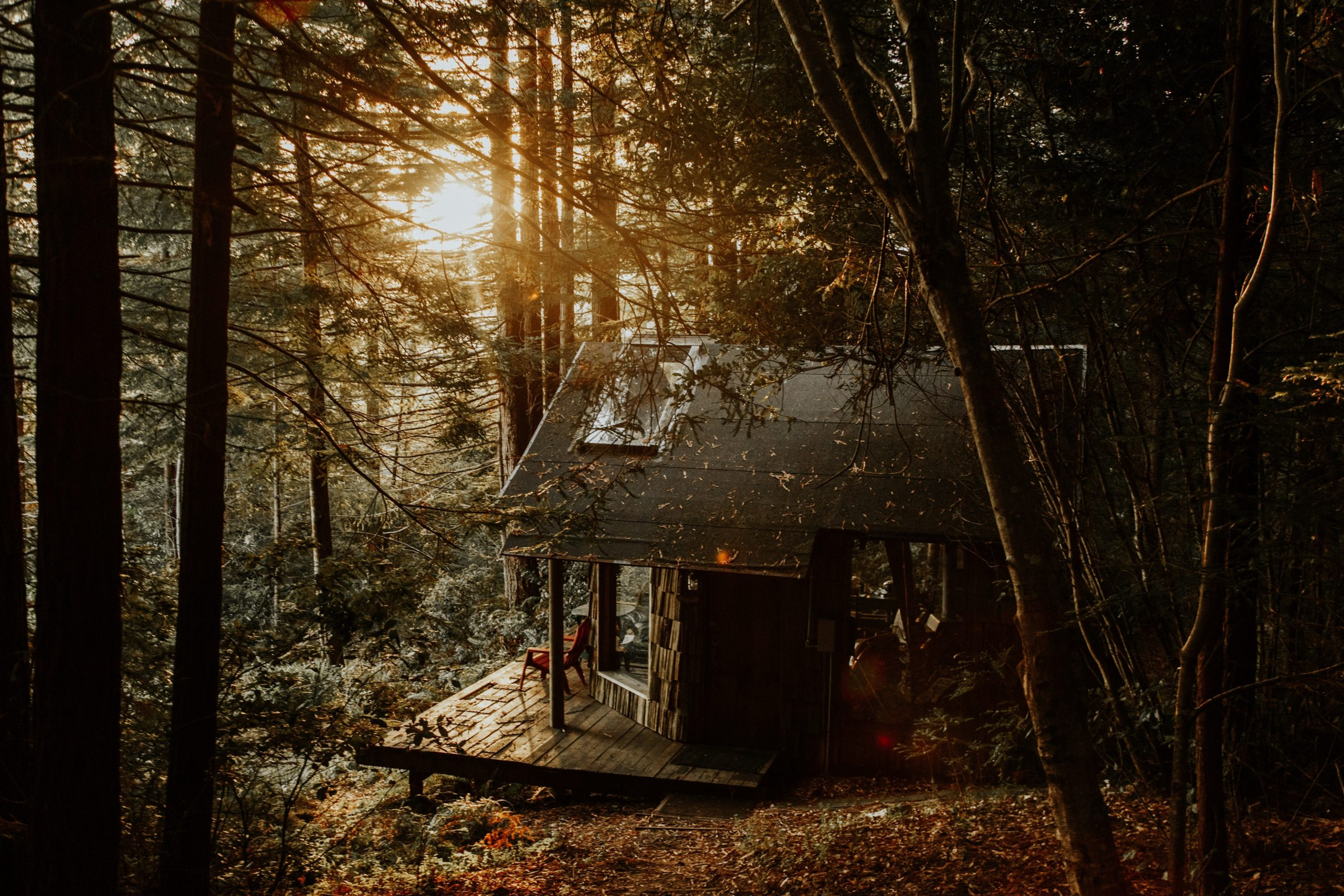 A Sanctuary in Wilderness