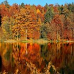 Autumn Scene Across a Lake