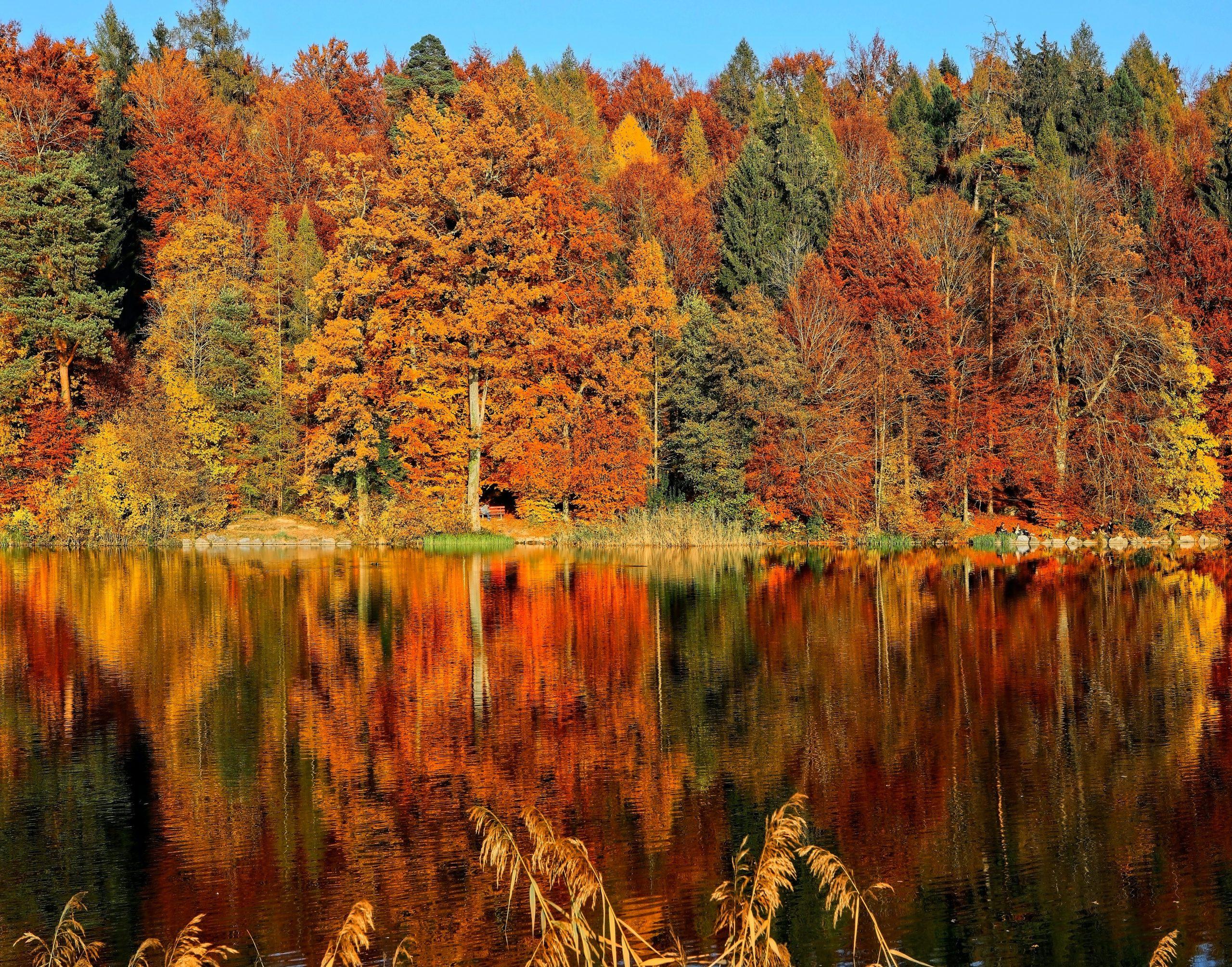 Autumn Scene Across a Lake