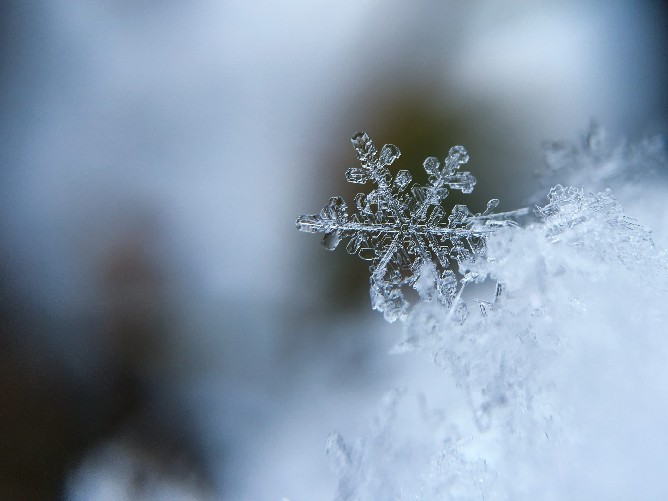Close up Snowflake HD Wallpaper